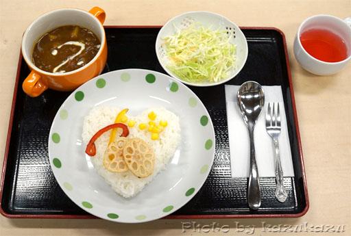 岐阜県美濃加茂市美濃加茂ツアーのお休み処やどりぎの日本一のカレー