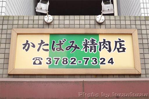 4013010919_01.jpg